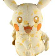 special pikachu pokemon
